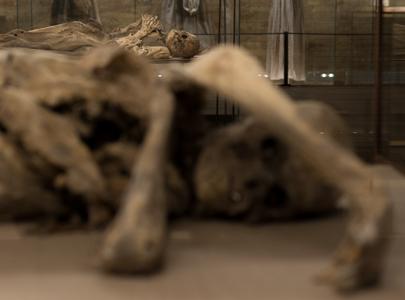Monsampolo del Tronto - Museo della Cripta_DSC_5349